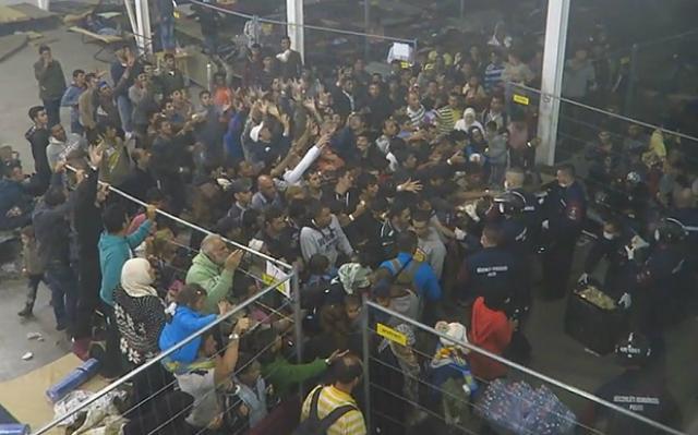 (VIDEO) U Mađarskoj hrane izbjeglice kao životinje!