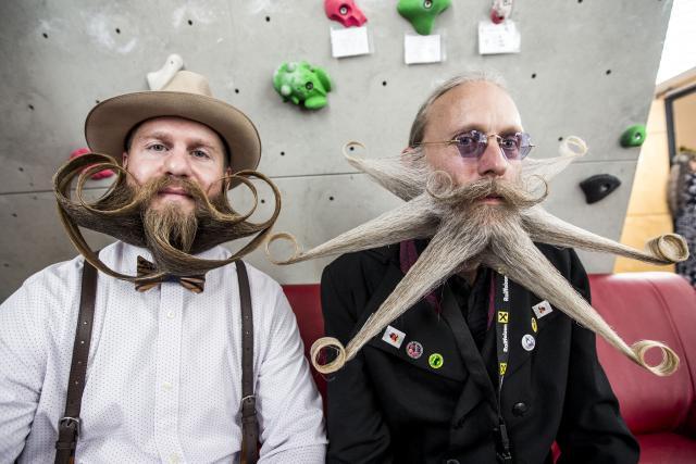 Festival brada