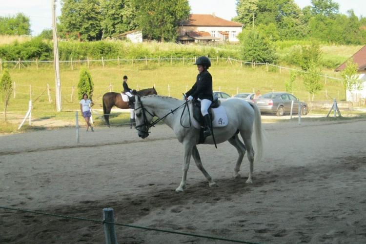 Djecak dresura konja