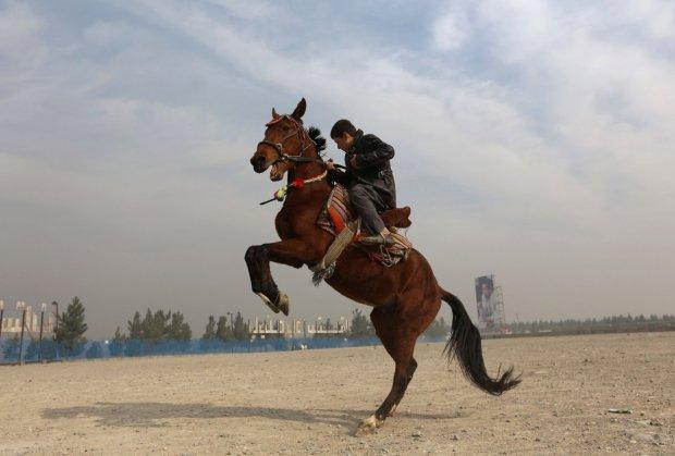 Djecak konj
