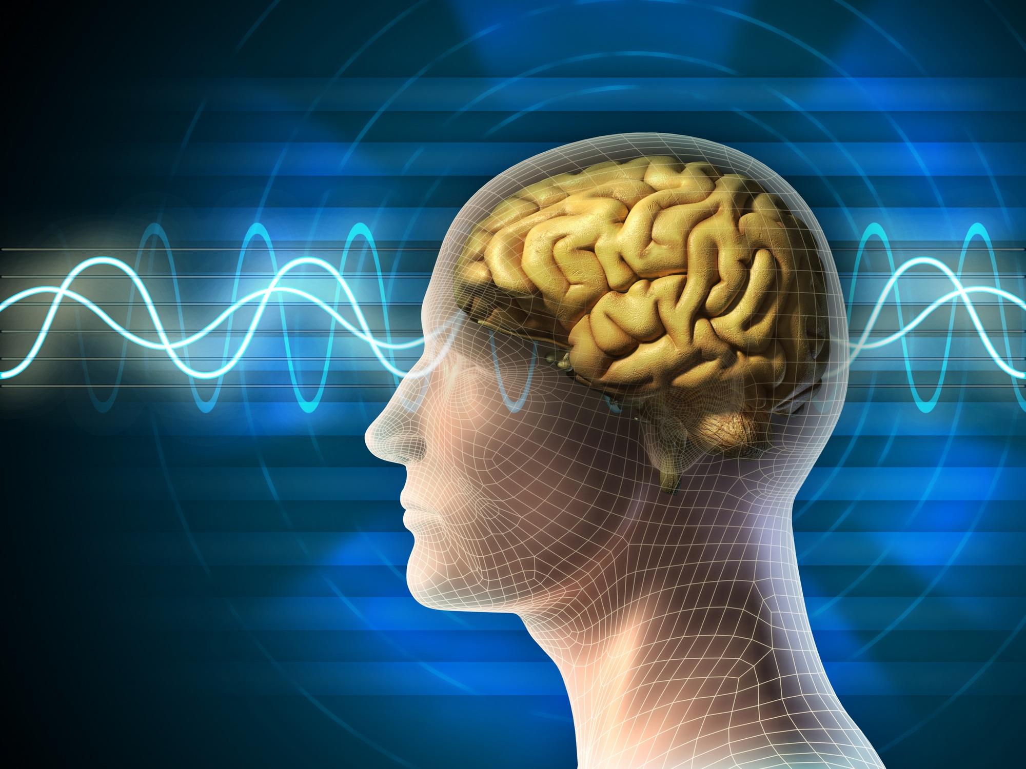 Mozak vjezba