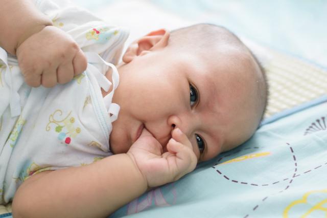 Beba sisa palac
