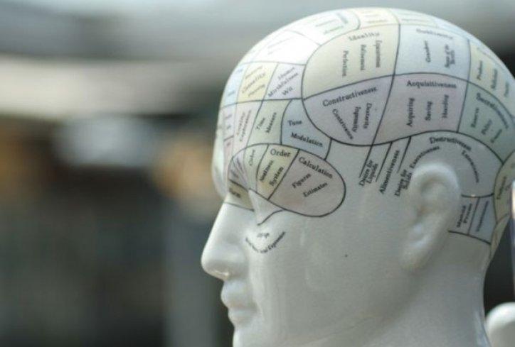 Ljudski um