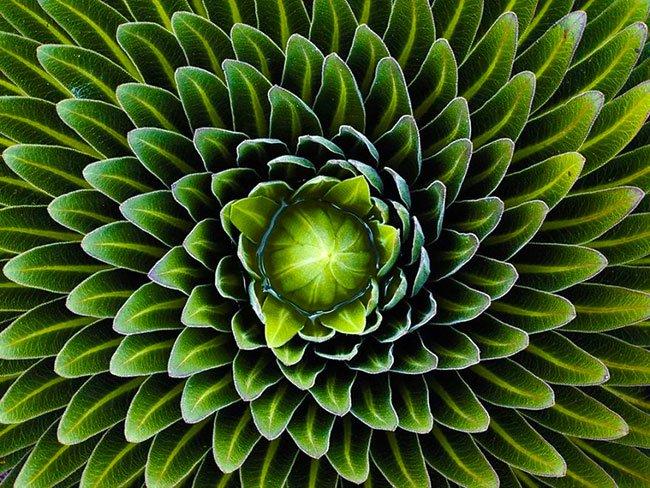 geometrija 16