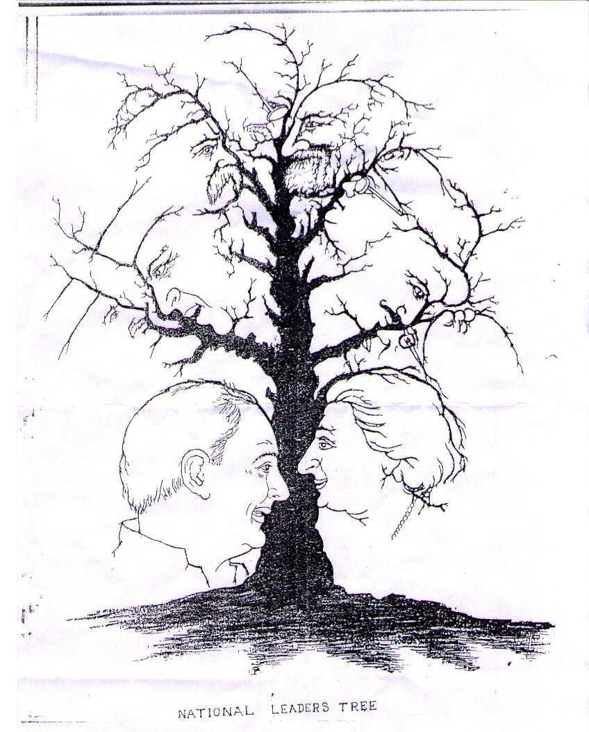 drvo lica