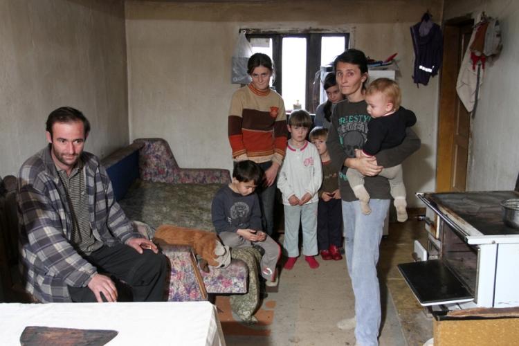 porodica babic