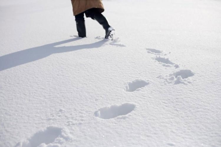 tragovi u snijegu