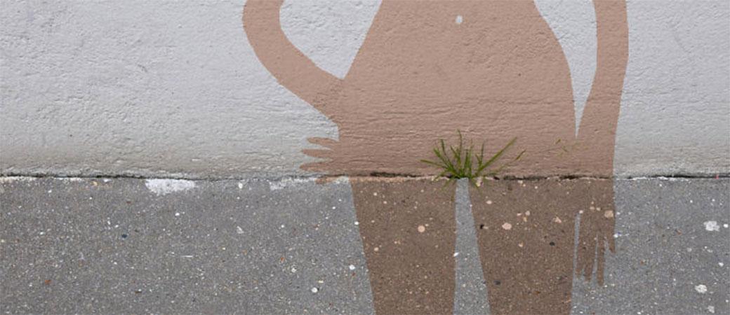 ulica inspiracija