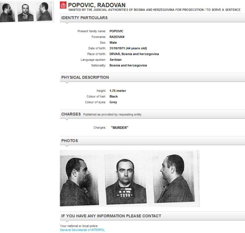 Interpol-radovan_popovic