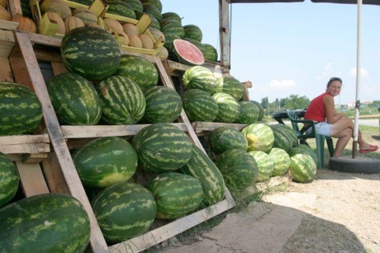 lubenica prodaja banjaluka