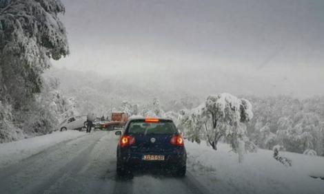 manjaca snijeg