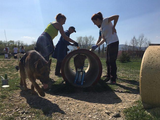 park za pse uredjivanje