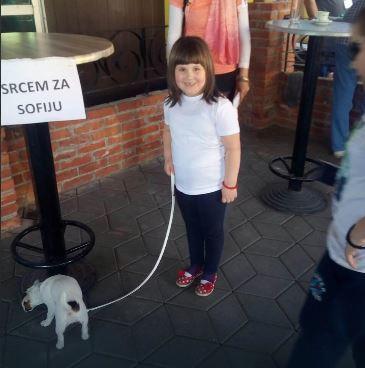 psi izlozba