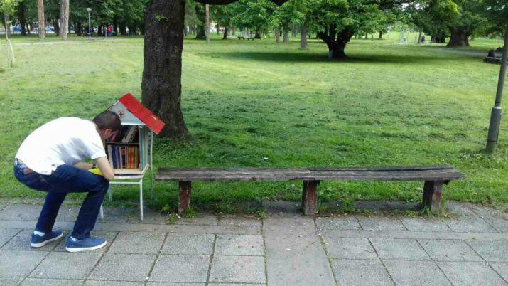 biblioteka u parku