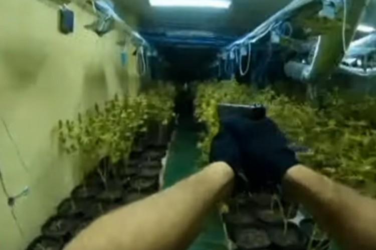 Pogledajte kako je policija upala u laboratoriju droge u Banjaluci