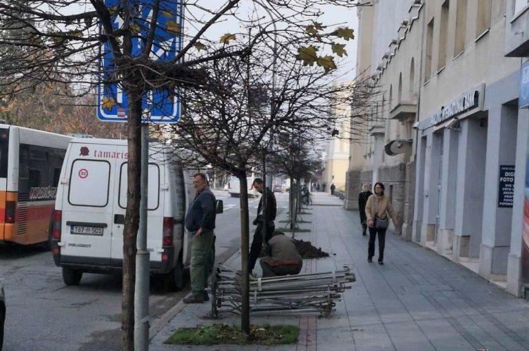 Nova stabla u Ulici Kralja Petra I Karađorđevića